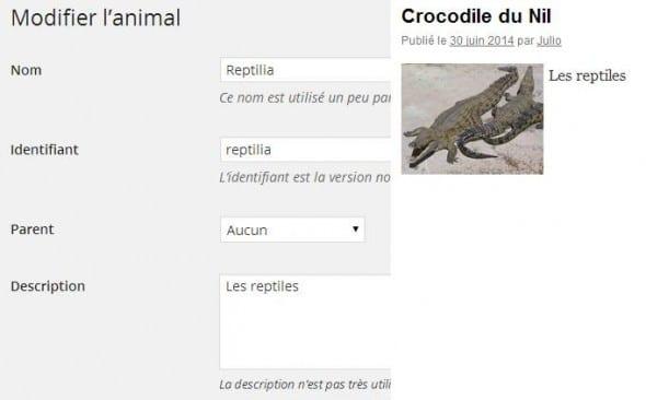 """Les reptiles"""