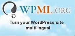 WPML banner